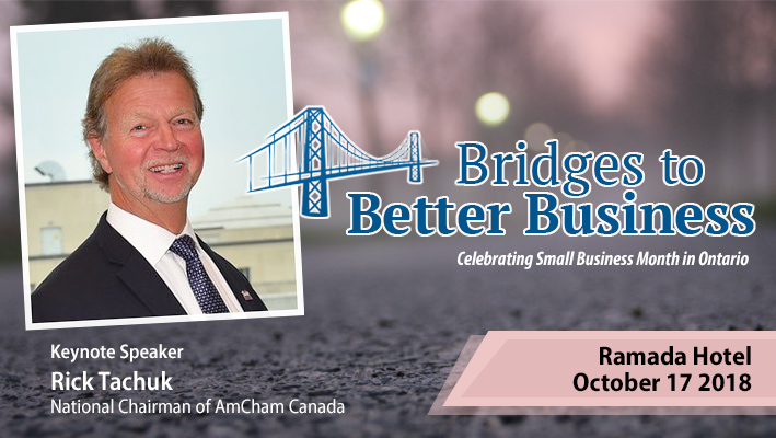 Bridges to Better Business Cornwall