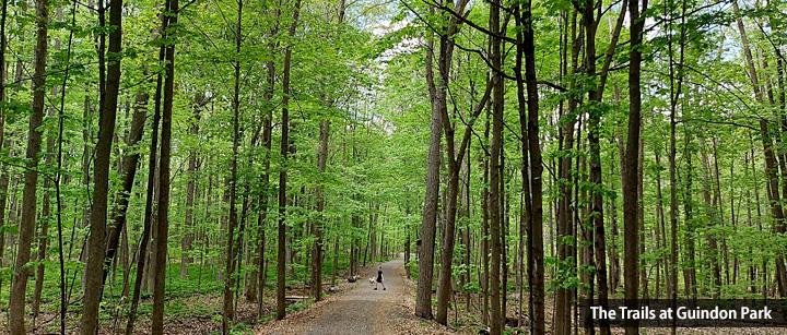 The Trails at Guindon Park